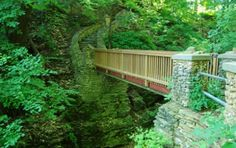This is Phelps Park in Decorah, Iowa.  A gorgeous hiking park that takes hours to traverse the whole trail.