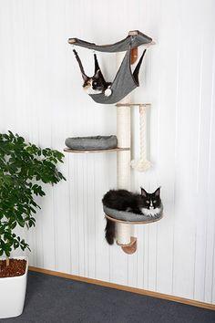 Katzen Wandpark Tiermbel Luxusmbel Katzenmbel In lots of variations Cat Tree Cat Tree For The Wall. Cool Cat Beds, Cool Cats, Cat Wall Furniture, Cat Wall Shelves, Gatos Cool, Diy Cat Tree, Cat Playground, Cat Enclosure, Cat Condo