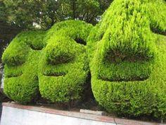 Beautiful Gardens, Beautiful Flowers, Landscape Design, Garden Design, Topiary Garden, Topiary Plants, Go Green, Green Art, Yard Art
