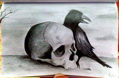 Teschio con corvo, disegno a matita.