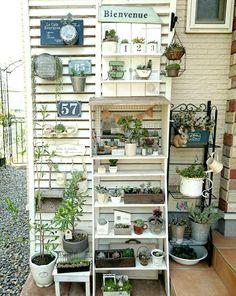 玄関の画像 by *himekan*さん | 玄関と手作りガーデニングコンテストとガーデニングと多肉植物と棚DIY