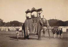 elephant howdah... Gold howdah of gayakwad king of baroda ... Baroda state having 55 elephants.. and the royal elephant decorated by gold and silver ornaments and silk cloth..
