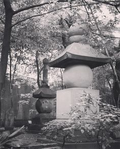 nezu_museum_tokyo_japan. #zen#garden#beautiful#landscape#nature#japanesegarden #drygarden#zengarden#rockgarden #pond#bonsai#coi#carp#ornament #buddhist#temple #baskin#shrine#lantern#tourou#tukubai#moss#plants#green#sakura#momiji#mountain #travel#japan#trees