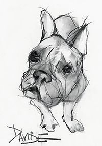 TROWBRIDGE - Valerie Davide Dogs - Meet some 'friends' of artist Valerie Davide. Some well recognised four-legged friends come to life through her charcoal drawings. Her spontaneous outpouring of energy results in images which are both distinctive and full of life.