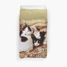 Three Kitties by augustinet
