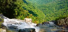 Bach Ma National Park Tour Full Day | VM Travel