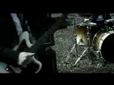 Babyshambles - Fuck Forever Directed by Jez Murrell. I like this video it's playful. I like all the many varied shots in it and especially the farm animals, the goose superimposed over the shots. I love the muted tones with the union jack vivid.  I like the story being told aswell with subtitles.