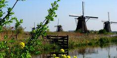 Moinho/ Holanda