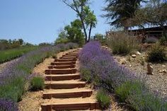 Image result for garden stairs diy