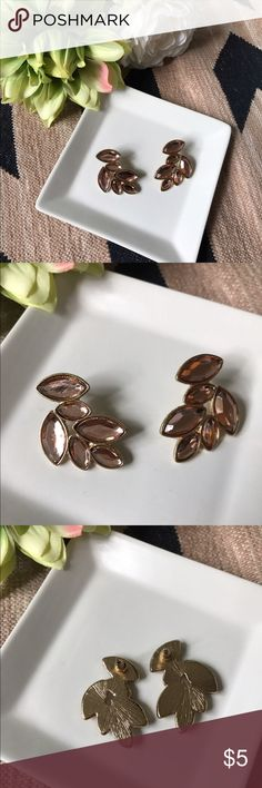 Light pink/tan color leaf earrings Forever 21. Light pink/tan color leaf earrings from Forever 21.  In good condition.  No missing pieces.  Bundle and save! Forever 21 Jewelry Earrings
