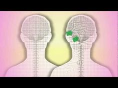 ▶ CranioSacral Therapy. What is it? How does it work? by Tad Wanveer - YouTube
