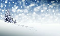 free christmas pictures & images in hd - pixabay - pixabay Winter Snow, Winter Christmas, Christmas Time, Christmas Cards, Merry Christmas, Pictures Images, Free Pictures, Free Images, John Cheever