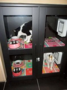 SureFlap Feeding Station. SureFlap doors on Ikea cabinet. Door reads microchip, so keeps dogs from eating food. Also good for cats on special diets.