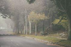 Niebla en A Guia by sairacaz (Abad Torres) on 500px