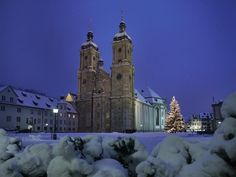 We got engaged right by that tree :-)  St Gallen, Switzerland