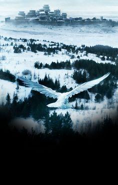 White Raven (6x10)