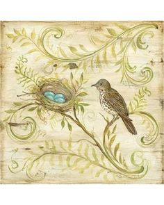 Amazing Spring Savings on Natures Nest Ii Poster Print By Kate Mcrostie