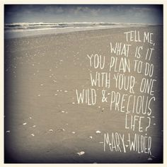 Mary Oliver - I love this, probably my most favorite line of poetry, ever.