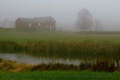 A foggy farm setting north of town.    Pastoral: Sharing the Beauty of Loudoun County, Virginia Through Photography