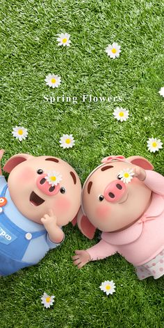 Pig Wallpaper, Cartoon Wallpaper Hd, Funny Phone Wallpaper, Disney Phone Wallpaper, Otters Cute, Cute Piglets, This Little Piggy, Little Pigs, Happy Birthday Pig