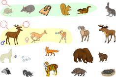 Mammals - Spanish Vocabulary - LanguageGuide.org
