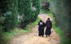 Ortodox