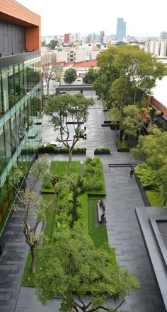 Coyoacán Corporate Campus Landscape by DLC Architects Pinned to Garden Design by BASK Landscape Design. Landscape Design Plans, Landscape Architecture Design, Urban Landscape, Landscape Architects, Landscape Plaza, Commercial Landscape Design, Landscape Bricks, Commercial Landscaping, Modern Landscaping