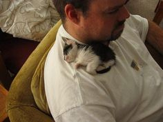 This teeny kitten who knows that cats are man's best friend whether they're big or small. | 27 Pictures That Prove Cats Are Also Man's Best Friend