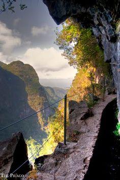 Madeira is ... nature, PR 9 - Levada do Caldeirão Verde http://www.travelandtransitions.com/destinations/destination-advice/europe/madeira-portugal/