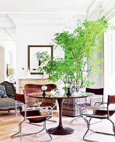 BRANCHES: Your Home's Best Accessory  |  A spray of spring branches adorns a tulip table in a Madrid living room by designer Miguel García de Valcárcel. Photo via Nuevo Estilo.