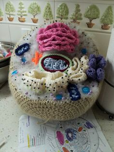 Crocheted Animal cell project