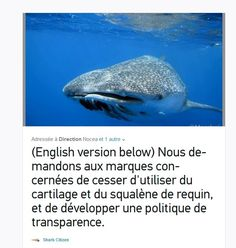 Sign and share our petition to stop products sharks  https://www.change.org/p/stop-%C3%A0-l-utilisation-de-produits-utilisant-du-requin-stop-the-use-of-shark-products