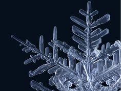 Snowflake 3 *macro photography  -Matthias Lenke  http://www.artdebutant.com