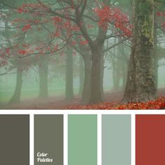 Color palettes for coloring or painting.