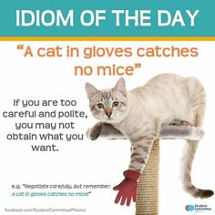 """""""Idioms are fun, creative, and advanced ways to express meaning. == One of the things that really gives a language its character is its idioms. Native speakers love idioms, because they consider them to be an important part of their cultural heritage. Interesting English Words, English Fun, English Idioms, English Phrases, Learn English Words, English Lessons, English Riddles, English Class, English Language Learning"""