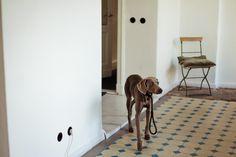 ++ Magnus Reed — Photographer, Apartment and Studio, Berlin-Schöneberg