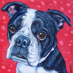 "Custom Pet Portrait Painting on Canvas in Acrylics 8"" x 8"" of a Dog, Cat, Kitten, Puppy or Other Animal. Boston Terrier Memorial Art sample from Pet Portraits by Bethany."