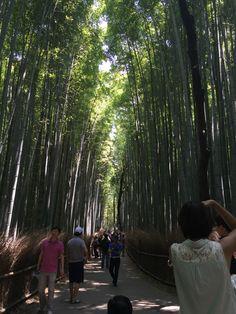 Chikurin, Arashiyama, Kyoto