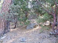 This residential lot is situated in Sonora Meadows subdivision. It has mature oaks and pines that provide a peaceful and tranquil setting. The naturallandscape has rock boulders that provide privacy perfect to build a home on top. Property is just below the snow line. Minutes from historic Twain Harteand recreational activities in the beautiful Sierra foothills.