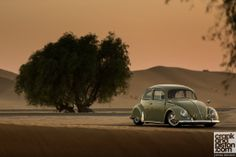 1957 Resto-Cal beetle based in the UAE.