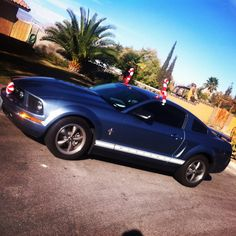 #mustang #christmas #cars #candy #canes Candy Canes, Mustang, Bmw, Cars, Vehicles, Christmas, Xmas, Mustangs, Autos