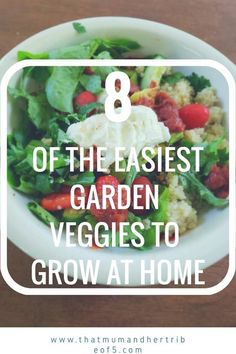 8 Easy Garden Veggies to Grow Healthy Meals For One, Healthy Recipes On A Budget, Healthy Breakfast Recipes, Budget Meals, Easy Meals, Healthy Dinners, Soccer Snacks, Spaghetti Squash Nutrition Info, Grow Your Own Food