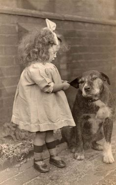 I love this picture. It's such an amazing shot because of how cute an innocent this little girl is. But also how vicious a dog can be, but he's still calm and generous to the little girl.