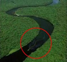 One Unbelievable Anaconda in a Amazon River Sized Circle of Skepticism.