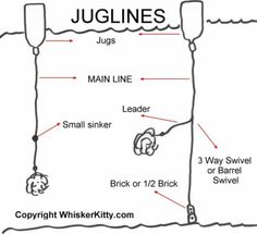 1000 images about fishing on pinterest fishing knots for Jug line fishing