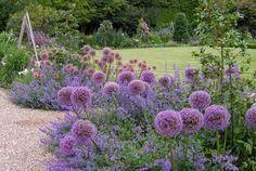 Blumengarten Anlegen with Vorgarten Lavendel Popole top with Kiel Botanischer Garten from popole.top