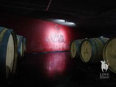 Uma das mais premiadas casas de vinhos em Portugal, Casal da Coelheira. Esta e muitas outras histórias a partir de dia 19 de Março no nosso portal.