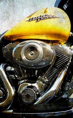 New 2013 Harley-Davidsons now @ High Desert!