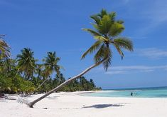 Dominica, strand Beach, Water, Outdoor, Gripe Water, Outdoors, The Beach, Outdoor Games, Outdoor Living