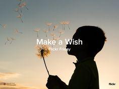 Flickr Friday: Make a Wish http://amapnow.com http://my.gear.host.com http://needava.com http://renekamstra.com